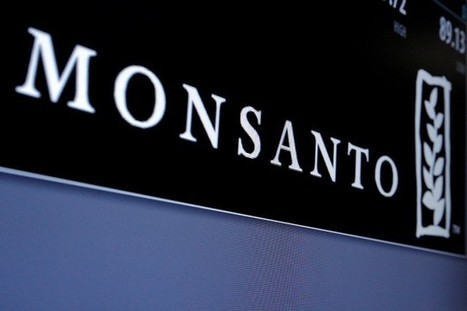 Bayer offre 62 milliards US pour acheter Monsanto | Grain du Coteau : News ( corn maize ethanol DDG soybean soymeal wheat livestock beef pigs canadian dollar) | Scoop.it