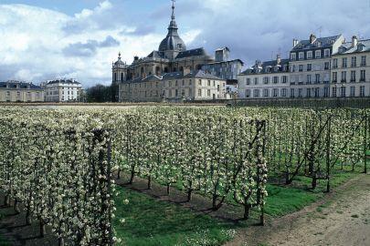 Versailles, rayon fruits et légumes - LeMonde.fr | GenealoNet | Scoop.it