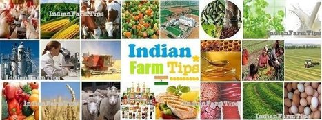 Indian Farmers-wish you a Bright Future | Facebook | Organic Farming | Scoop.it