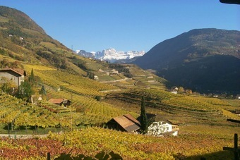 I Vini dell'Alto Adige | Vino al Vino | Scoop.it
