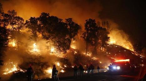Two Northern California fires cause at least $1 billion in insured losses | Timberland Investment | Scoop.it