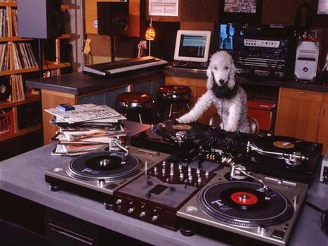 Do You Really Listen To Full Albums? : NPR | Vloasis vlogging | Scoop.it