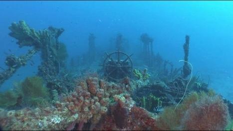 Vidéo plongée Full HD | Martinique : l'épave du Nahoon ! | Plongeurs.TV | Scoop.it