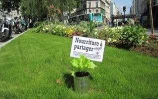 Et si on cultivait des potagers en libre-service dans les rues ? | OPTIMUNDI | Scoop.it