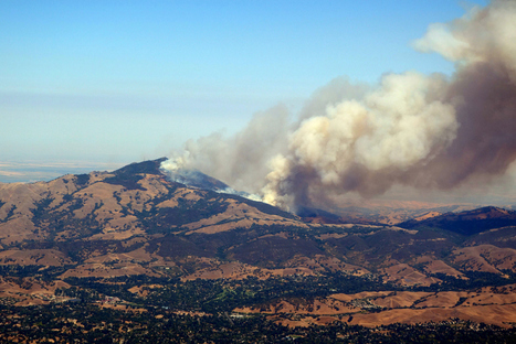 Morgan Fire On Mount Diablo 100%Contained - CBS San Francisco | Chaparral | Scoop.it