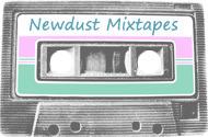 newdust // indie music blog » The Stepkids – Wonderfox (Video) | IndiePop | Scoop.it