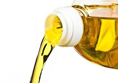 Green Savers  –  Sabia que o óleo que deita pelo cano pode poluir até um milhão de litros de água? | Websharing | Scoop.it