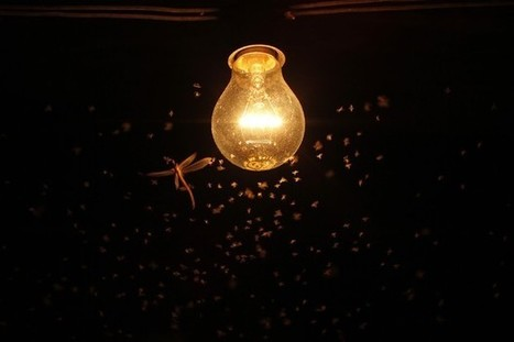 A New Frontier in Disease Prevention: Artificial Light | The world of LEDs | Scoop.it