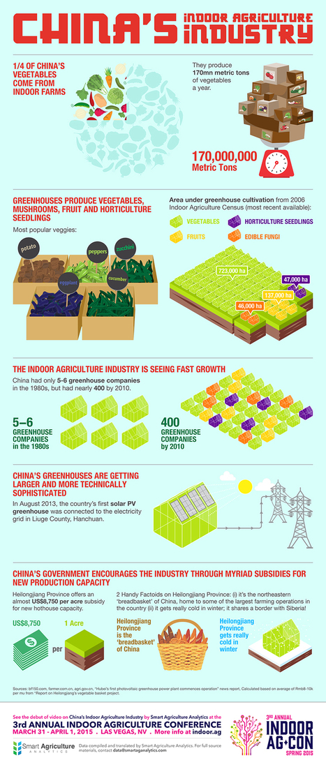 An Infographic of China's Indoor Agriculture Industry - Indoor Ag-Con | Hydroponics | Scoop.it