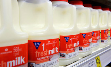 'Badger-friendly' milk to be sold in just three UK supermarkets | Food History & New Markets | Scoop.it