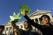 Why A UN Official's Threats Shouldn't Blunt Uruguay's New Marijuana Law - ThinkProgress   Drug law reform   Scoop.it