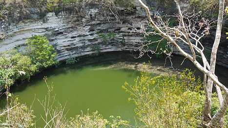 Cenotes: Mexican Dessert Pastry or Water-filled Underground Caves? | Geography of North America | Scoop.it