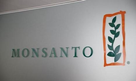 Monsanto's Climate Corp to expand digital farming platform | Grain du Coteau : News ( corn maize ethanol DDG soybean soymeal wheat livestock beef pigs canadian dollar) | Scoop.it