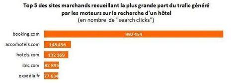 Etourisme faits et chiffres | L'actu de l'etourisme ! | Scoop.it