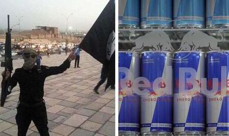 Islamic State terror fighters guzzle RED BULL to fuel their stamina | Team Tommy Support Group | Scoop.it