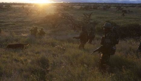 Rangers strike back at Poachers at Reserve where Royal couple got engaged | What's Happening to Africa's Rhino? | Scoop.it