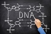 The Top 12 DNA Traits of a Good Sourcer | Sourcing and Talent Acquisition | Scoop.it
