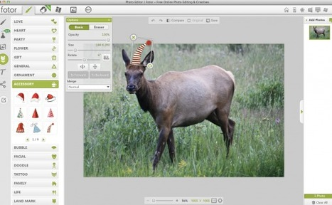 The 9 Best Browser-Based Photo Editing Tools | Technology Enhanced Learning in Teacher Education | Scoop.it