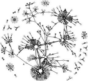 Fast clustering algorithms for massive datasets   Social Foraging   Scoop.it