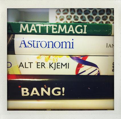 Leselyst: Bokryggpoesi #3   Skolebibliotek   Scoop.it
