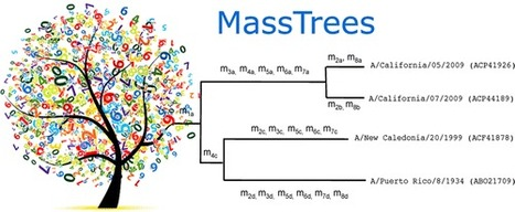 Mass Trees: A New Phylogenetic Approach and Algorithm to Chart Evolutionary History with Mass Spectrometry - Analytical Chemistry (ACS Publications) | Systems biology and bioinformatics | Scoop.it