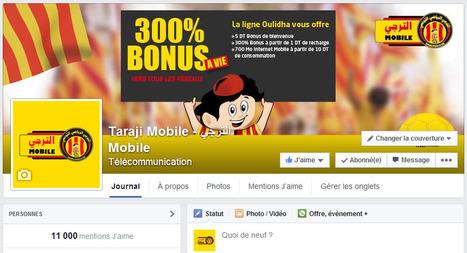 11.000 fans aujourd'hui nous suivent sur Facebook | Taraji Mobile | Scoop.it