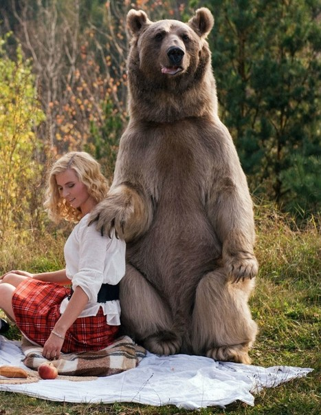 Why did a grizzly bear picnic with a mother and daughter in Russia? | GrindTV.com | xposing world of Photography & Design | Scoop.it
