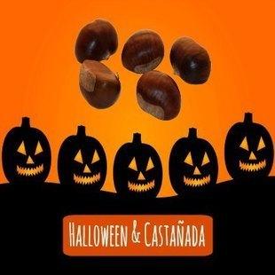 Halloween & Castañada: Cuentos, canciones y recetas - 2 profes en apuros | FOTOTECA INFANTIL | Scoop.it