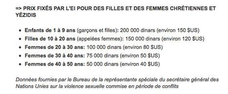 Violence sexuelle de l'EI: du jamais-vu dans l'histoire de la guerre | Annie Mathieu | Politique | whynotblogue | Scoop.it