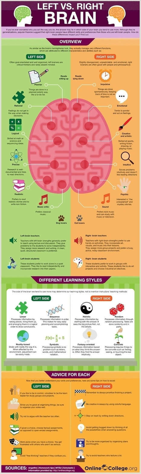 Left Brain vs Right Brain - Strengths and Learning Styles - The Coffee Klatch | Infographics | Scoop.it