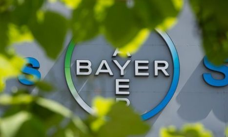 Bayer-Monsanto, la coûteuse gestation d'un mastodonte | Digital, innovation et santé ! | Scoop.it