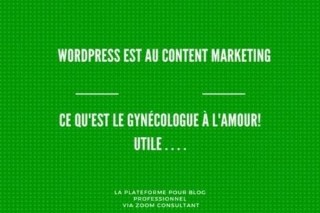 Des experts Wordpress à votre porte - Jacques Tang   Les Outils du Community Management   Scoop.it