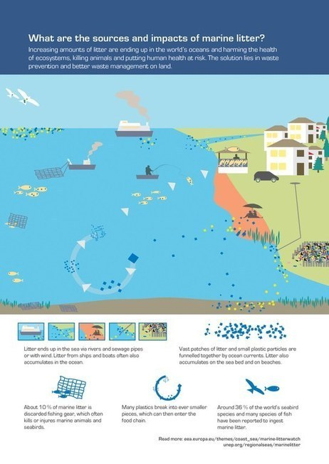 What are the sources and impacts of marine litter? — European Environment Agency (EEA)   Environment.   Scoop.it