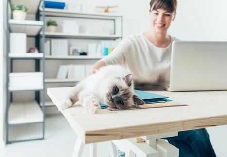 Les 9 méthodes de travail les plus insolites de ces dernières années - Mode(s) d'emploi | Accompagner la démarche portfolio | Scoop.it