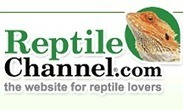 New Species of Crocodile Found in Africa | Earth Island Institute Philippines | Scoop.it
