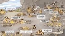Trabajando de manera colaborativa la Prehistoria | Nuevas tecnologías aplicadas a la educación | Educa con TIC | Recursos EDU | Scoop.it