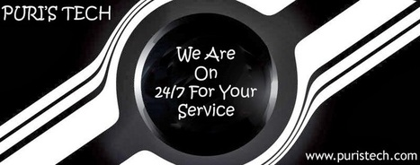 Puri's Tech - Limousine Answering Services: OUR SERVICES | PurisTech | Scoop.it