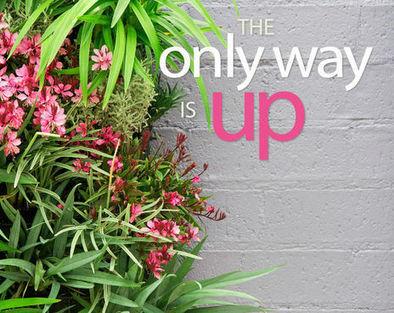 DIY Vertical Garden | Home Design | Scoop.it
