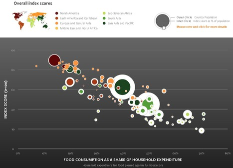 Global food security index examines the core issues of food affordability, availability and quality   Piccolo Mondo   Scoop.it