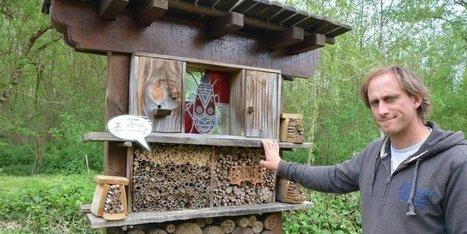 Mortalité des abeilles en Charente : et maintenant à qui le tour ? | EntomoNews | Scoop.it