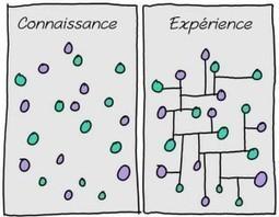 Le Secret de L'Intelligence et de la Créativité : Établissez des Connexions | Engagement Art In Company | Scoop.it