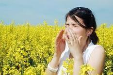 How to Defend Against Spring Allergies | HVAC expert tips and guide | Scoop.it