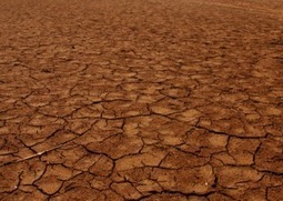 Still Hurting In The Heartland: The Historic Drought Continues | Sustain Our Earth | Scoop.it