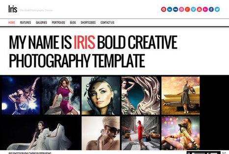 35+ Best Photography WordPress Themes 2013 | Best WordPress Themes | Scoop.it