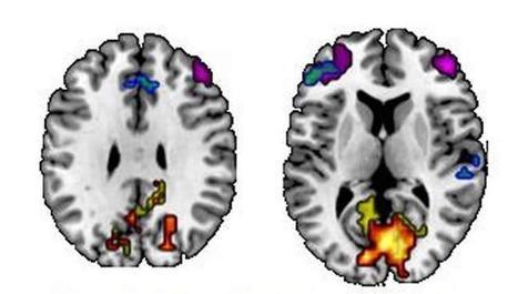 What's Your Memory Style? | Linguagem Virtual | Scoop.it
