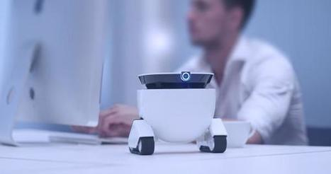 Roboming Fellow : un compagnon robotisé amicalement votre | Usine 4.0, Robots, 3D Print, Drones | Scoop.it