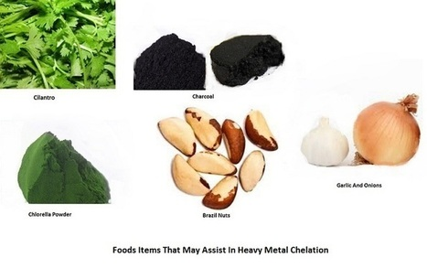 6 Foods Items That May Assist In Heavy Metal Chelation | Disease and Treatment | Scoop.it