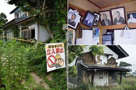 Fukushima nuclear zone 'to become world's next bizarre tourist hotspot' | Strange days indeed... | Scoop.it