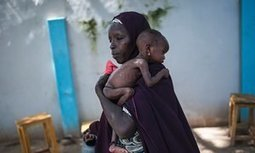 Stunting and poverty 'could hold back 250m children worldwide' | 2Develop | Scoop.it