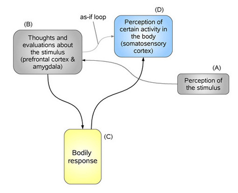 Emotion, Theories of[Internet Encyclopedia of Philosophy] | Emotional Design | Scoop.it